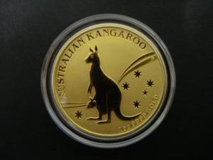 kangaroo_front