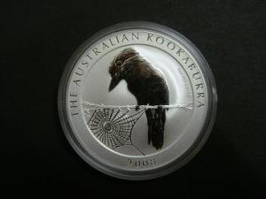 kookaburra_front